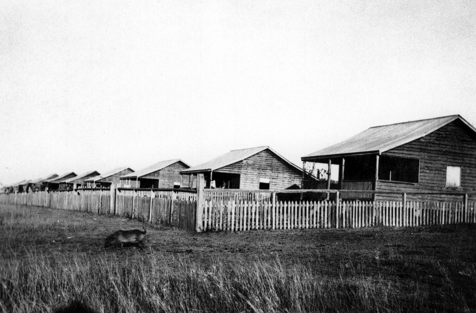 The first row of cottages at Barambah Aboriginal Settlement c1920