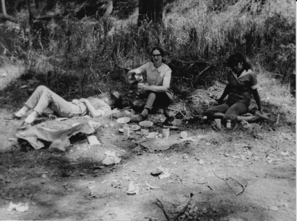 Nurses at picnic at Cherbourg c1962