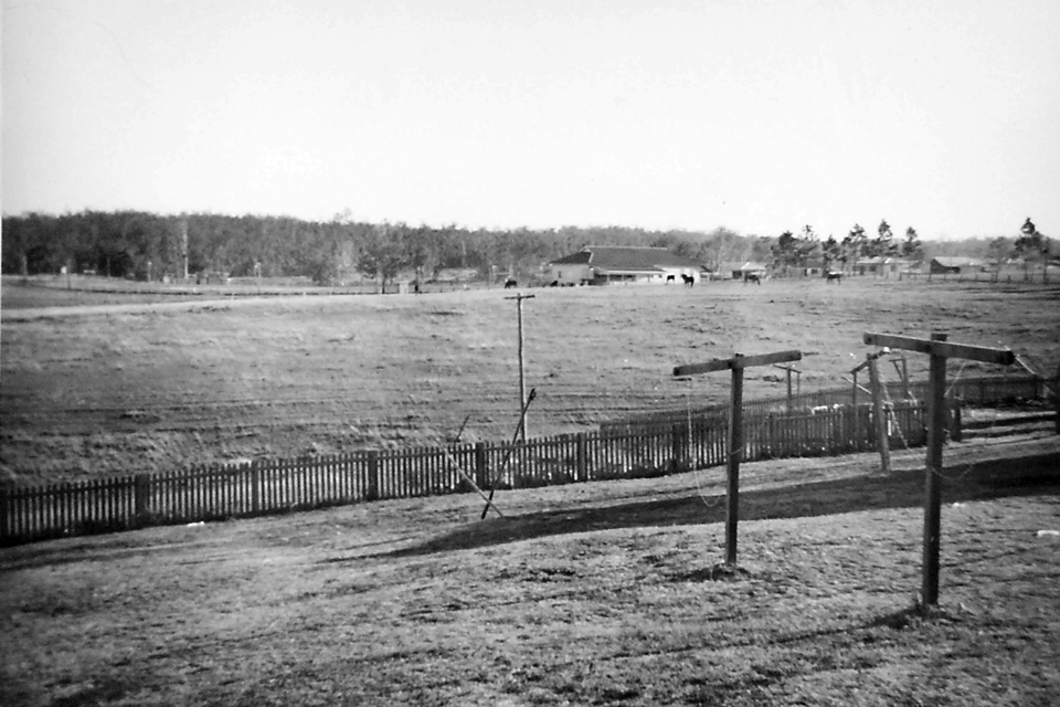 View of showgrounds from the Nurses Quarters at Cherbourg Hospital c1961