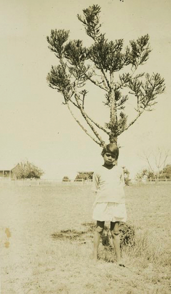 Girl in front of Bunya Pine at Cherbourg Aboriginal Settlement c1934