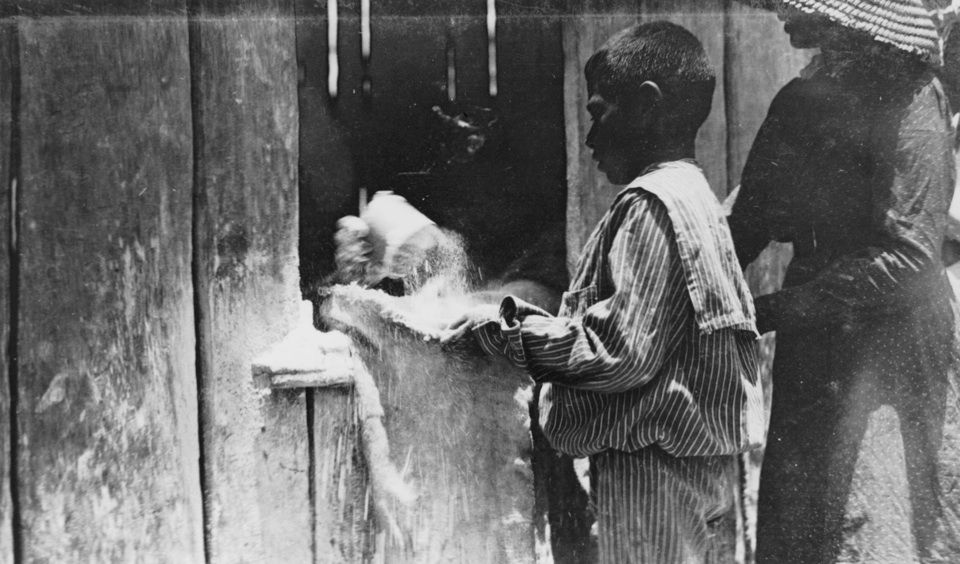 Boy receiving flour rations at Barambah Aboriginal Settlement 1911